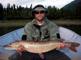 Large northern pike