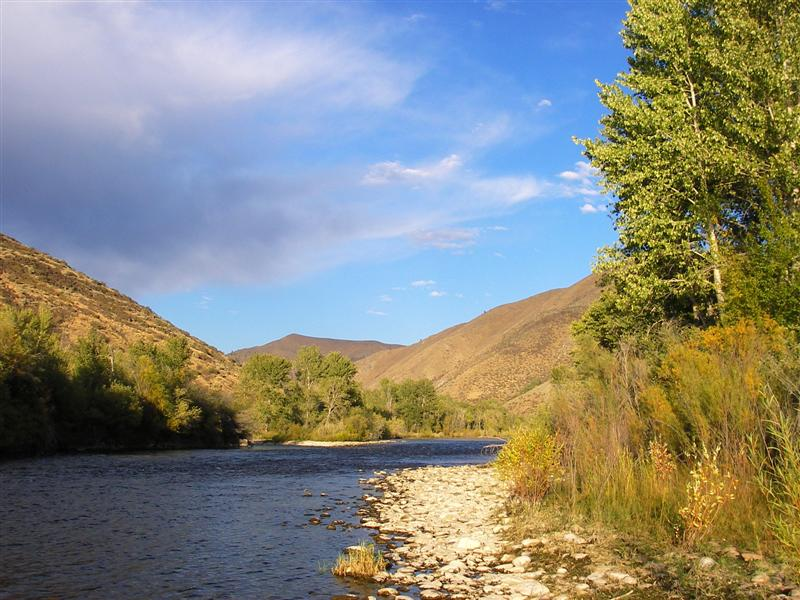Fall fishing fish swami for Boise river fishing