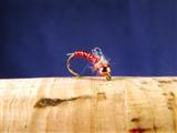 Red Disco Zebra Midgeling